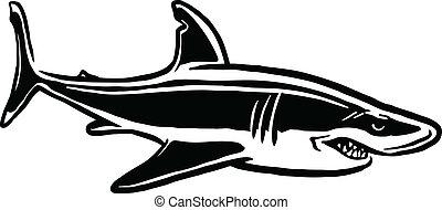 shark attack - black and white illustration of shark