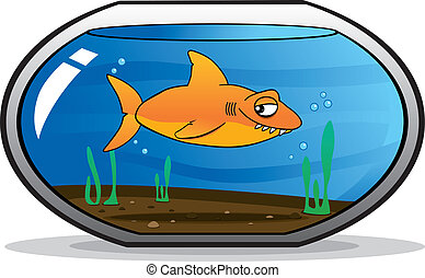 Shark disguised as a goldfish in an aquarium. Never trust in...