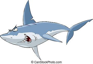 Shark on a white background, vector illustration