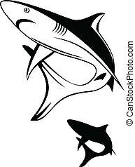 shark - Vector illustration black shark and silhouette