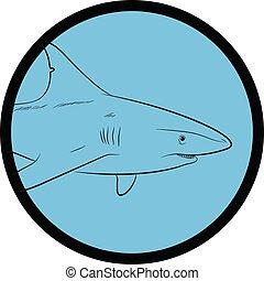 Shark Face Closeup Vector