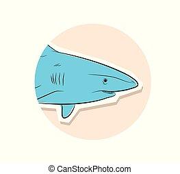 Shark Fish Face Closeup Vector