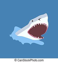 Shark fish illustration