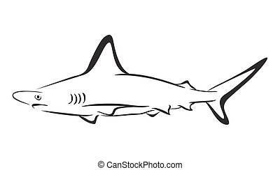 shark icon, vector