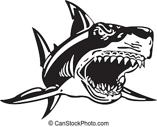 Shark - Black and white image of an attacking shark