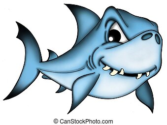 Shark on white background - color illustration