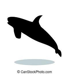 Shark predator black silhouette animal