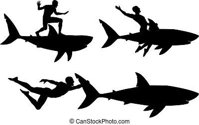 Shark rider - Editable vector silhouettes of a man riding a...