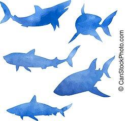 Shark Set