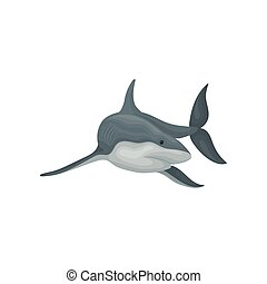 Shark swimming sea animal fish vector Illustration on a white background