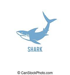 Shark - vector illustration.