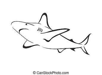 Shark vector outline icon.