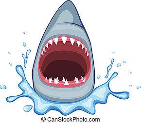 shark vector - shark open its mouth vector