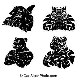 Shark,Tiger and Panther Tattoo