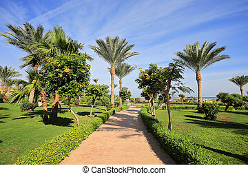 Sharm el Sheikh - Beautiful park in the resort Sharm...