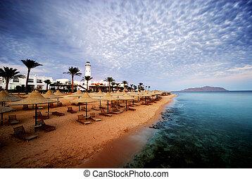 sharm el sheikh - beautiful beach and ocean in sharm el...