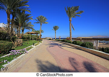 Sharm el Sheikh resort in Egypt