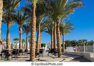 Sharm El Sheikh resort with palm trees and cafe under the clean blue sky