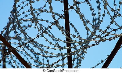 Sharp barbed wires - A scenic shot of barbed wires. The ...
