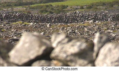 Sharp rocks used as barriers - A blur to focus shot of rocks...