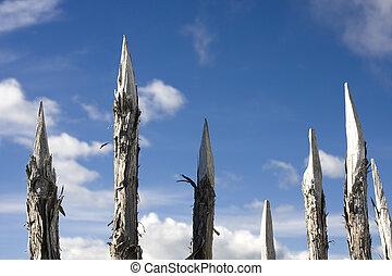Sharp Wooden Spikes - Dangerous Sharp Wooden Spikes for...