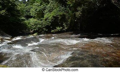 Sharrow river flowing down on a bedrock slope under green ...