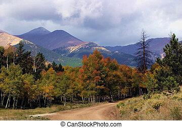 Shavano - Autumn color brightens cloudy day in the Colorado ...