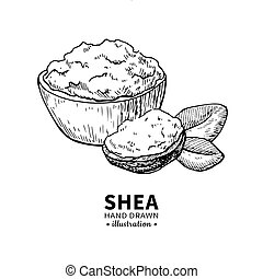 Shea butter vector drawing. Isolated vintage illustration of...