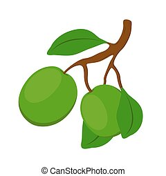 Shea cosmetics organic plant, nut. Cartoon flat style. Vector illustration