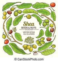 shea elements vector set on white background