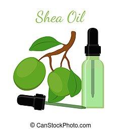 Shea nut, oil in bottle. Cartoon flat style. Vector illustration