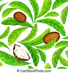 Shea nuts with leaves in vector pattern. Vector seamless ...
