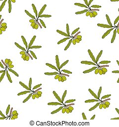 Shea tree branches seamless pattern. Vector illustration.