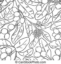 shea vector pattern on white background
