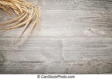 sheaf of barley