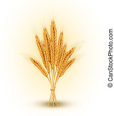 sheaf of golden wheat - vector background with a sheaf of...