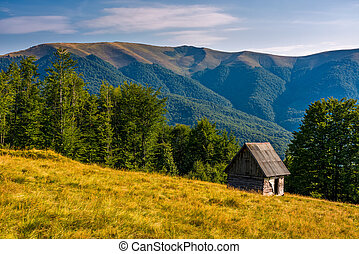 shed on a grassy slope in mountains. beautiful scenery in...