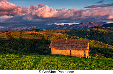 shed on the grassy hillside in red evening light. gorgeous...