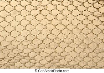 Shed snake skin pattern background over light background