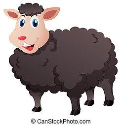 sheep, šikovný, neposkvrněný, temný grafické pozadí