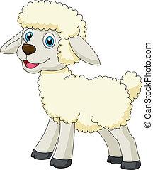 sheep, χαριτωμένος , γελοιογραφία
