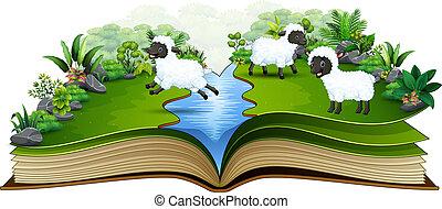 sheep, グループ, 本, 川, 開いた, 遊び