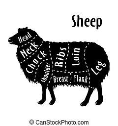 sheep, 図, 切口, sheep, butcher.