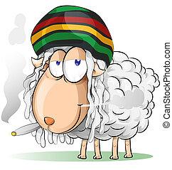 sheep, 狂気, jamaican