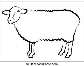 sheep, 白, シルエット, 隔離された