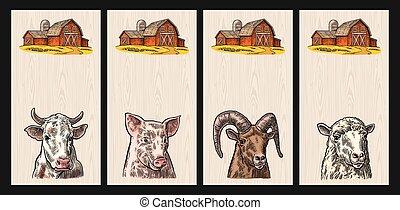 sheep, 頭, 牛, 豚, 隔離された, バックグラウンド。, 木, goat