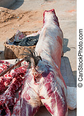 sheep 4 - A close-up of a skinned sheep waiting to get...
