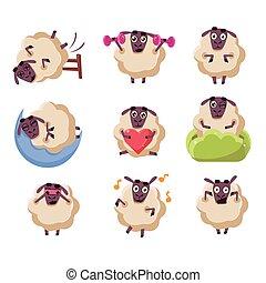 sheep, actividades, conjunto, carácter