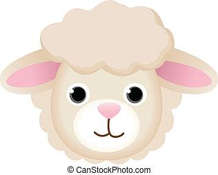 sheep, cara