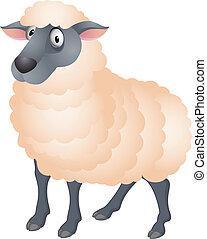 sheep, caricatura